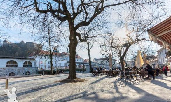 Old Town Ljubljana Slovenia