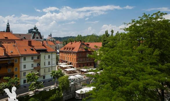 Apartmaji Kollmann Ljubljana Slovenia