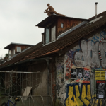 Metelkova mesto – Underground culture and idealism